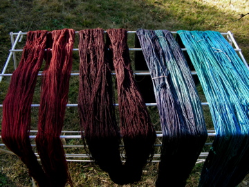 Hand-dyed skeins of yarn
