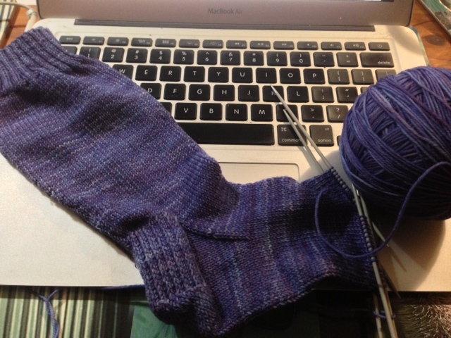 Blue-purple plain socks